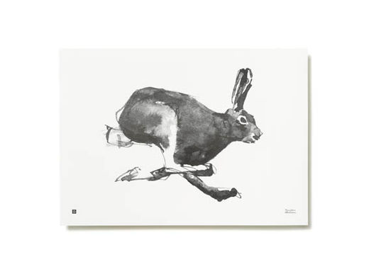 Poster Mountain Hare 40x30