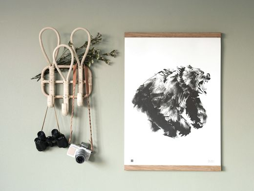 Poster Brown Bear 50x70