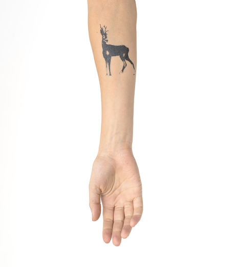 Temporary tattoo Roe Deer 7x7,5cm