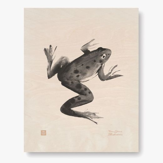 Plywood Poster Frog 24x30 cm